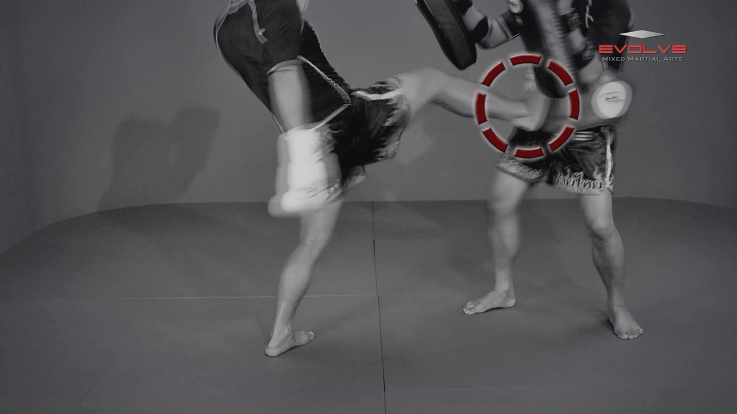 Saknarong Sityodtong: Fake x2, Right Kick x2, Right Push Kick