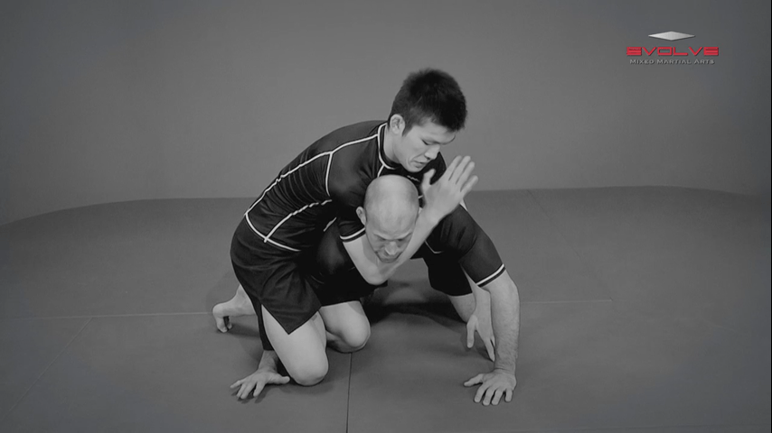 Shinya Aoki: Turtle Position Side Control