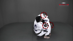 Single Leg Counter Sumi Gaeshi