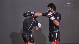 Slipping Punches