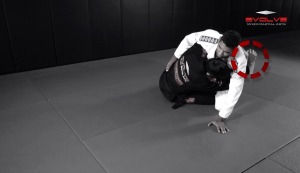 Taking The Back From Reverse Half Guard