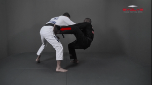 Tomoe Nage To Triangle Choke