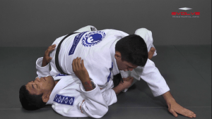 Top Half Guard Position to Back Control