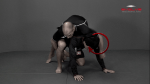 Top Position Inside Leg Cradle