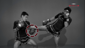 Yodbuangarm Lookbanyai: Push Kick, Fake, Turn Left, Right Knee