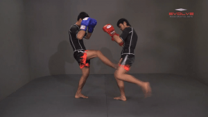 Yoddecha Sityodtong: Push Kick Thigh, Low Kick