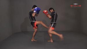 Yoddecha Sityodtong: Push Kick Thigh, Low Kick