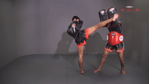 Yoddecha Sityodtong: Right Kick, Block, Right High Kick