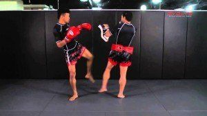 Awesome Muay Thai Liver kick KO
