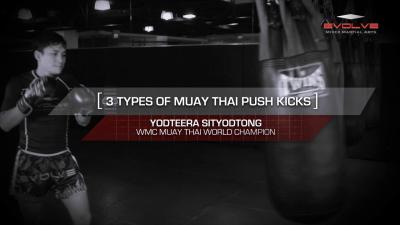 3 Muay Thai Push Kicks