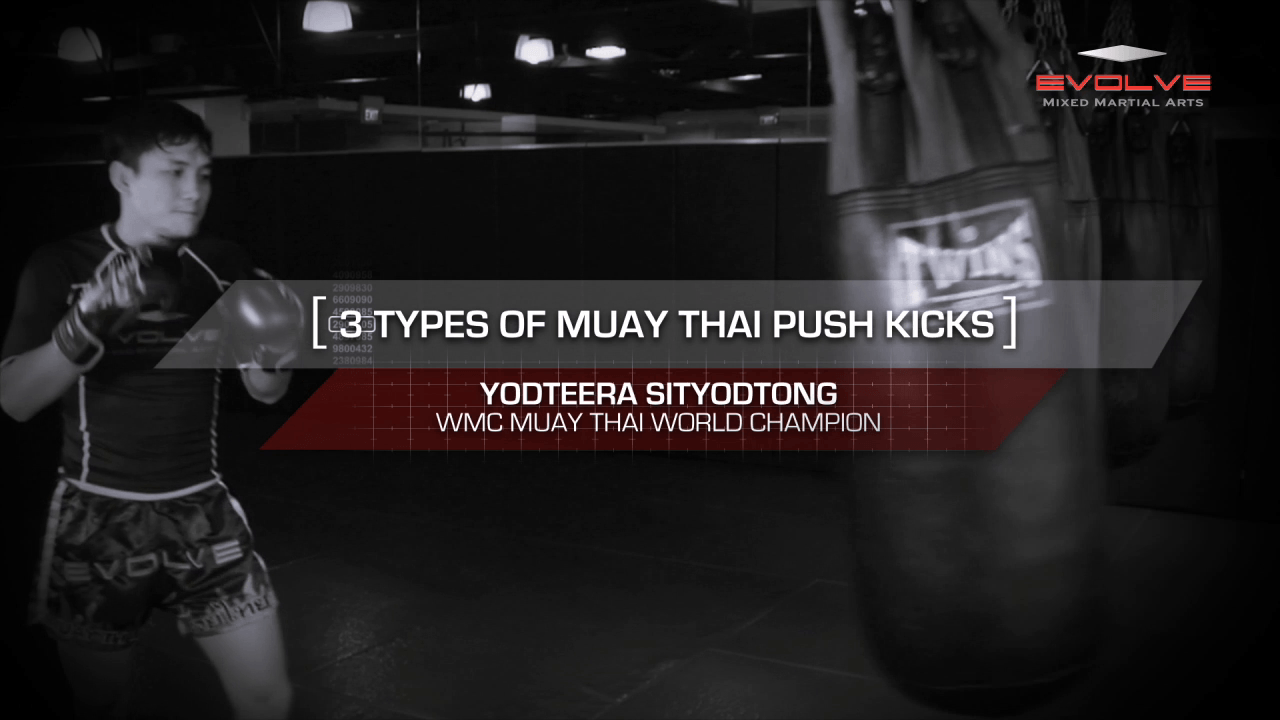3 Muay Thai Push Kicks