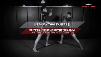3 Muay Thai Sweeps With Saenchai
