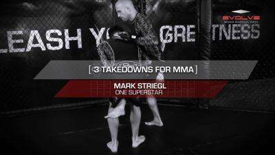 3 Takedowns For MMA