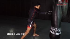 8 Low Kick Combinations