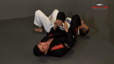 Armbar From Turtle Position
