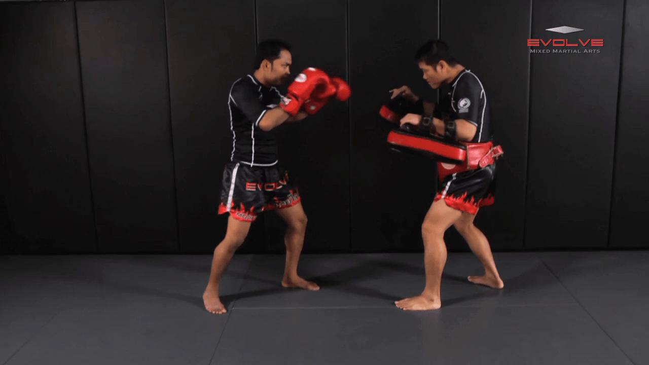 Dejdamrong Sor Amnuaysirichok: Cross Block, Right Low Kick, Right Punch