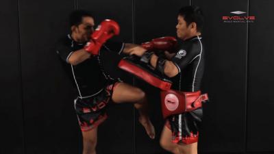 Dejdamrong Sor Amnuaysirichok: Left Kick, Left Cross Block, Right High Kick