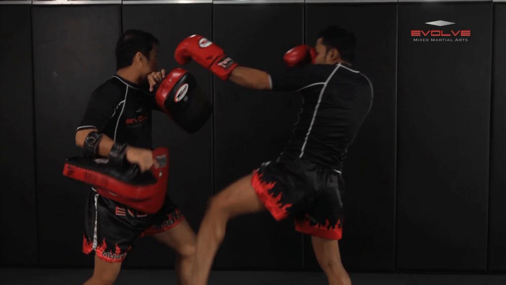Dejdamrong Sor Amnuaysirichok: Left Kick & Hold, Right Elbow