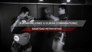 4 Jumping Knee & Elbow Combinations