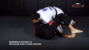 3 Ways To Defend The Berimbolo