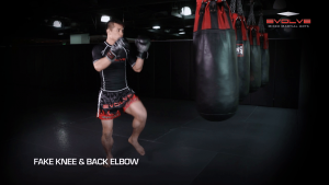 5 Muay Thai Fake Combinations