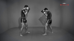 Chaowalith Jocky Gym: Push Kick Defense (Parry)