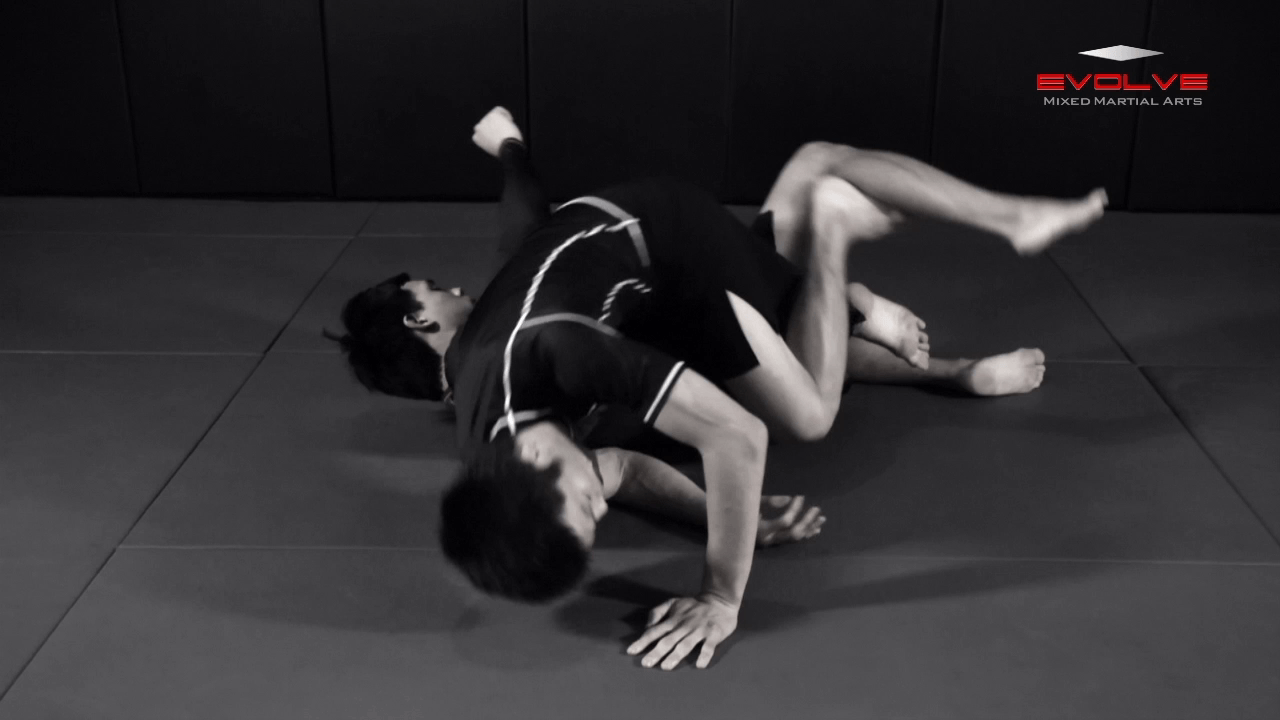 Full Mount Transition To Back Control