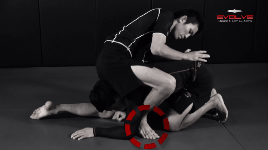 Triangle Choke Turtle Position