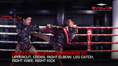 5 Leg Catch & Counterattack Combinations