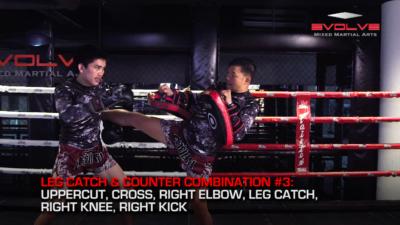 5 Leg Catch & Counterattack Combinations
