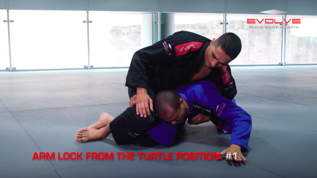 4 Arm Locks From The Turtle Position