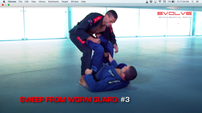 5 Sweeps From Worm Guard
