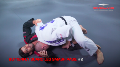 3 Butterfly Guard Leg Smash Passes