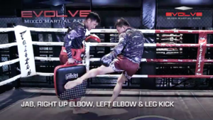 5 Leg Kick Combinations For Southpaws