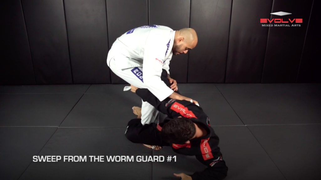 3 Ways To Sweep From Worm Guard