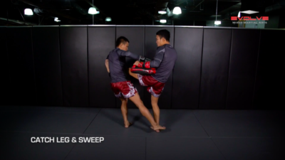 3 Ways To Defend And Counter A Push Kick
