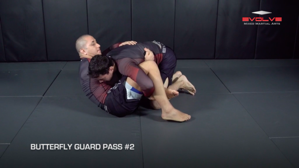 3 Butterfly Guard Passes