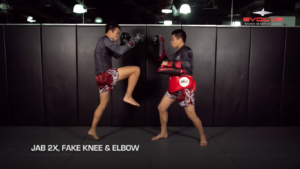 5 Fake Knee KO Combinations