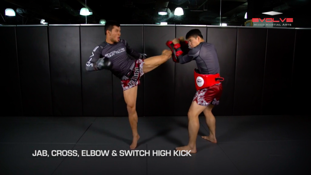 5 Switch High Kick Ko Combinations