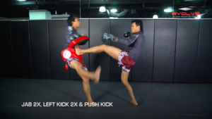 5 Push Kick KO Set Ups
