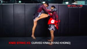 3 Knee Strikes