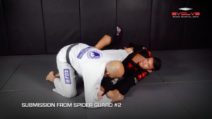 5 Spider Guard Submissions