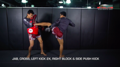 4 Side Push Kick Combinations