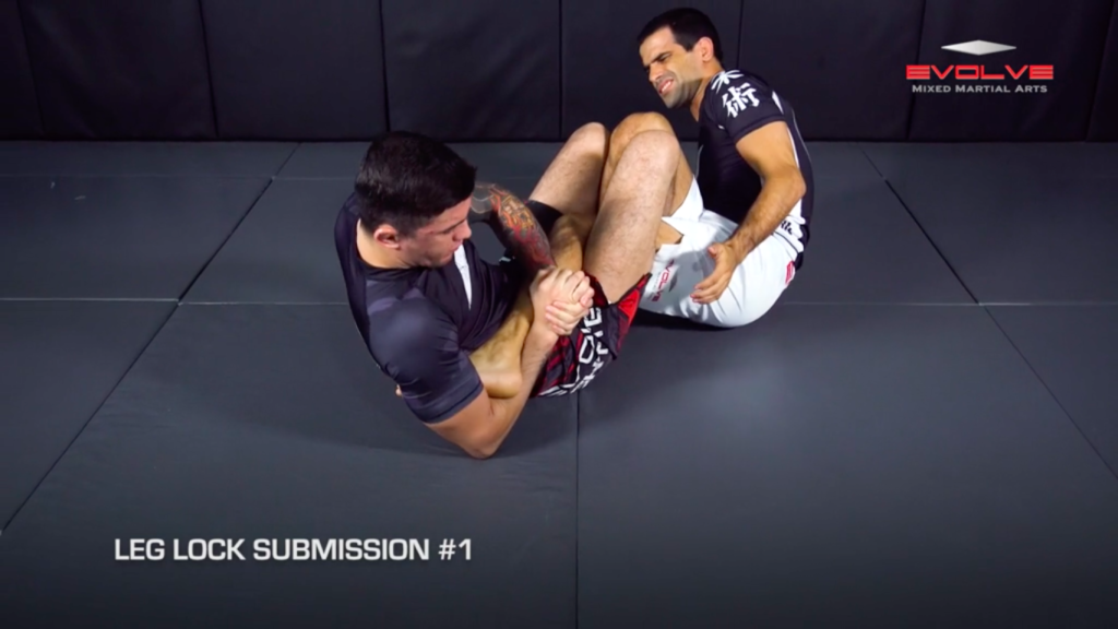 4 Leg Lock Submissions