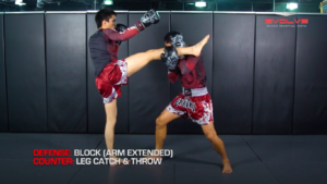 3 Ways To Defend And Counter An Uppercut-Hook-Cross-High Kick Combination