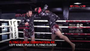 5 Flying Elbow Combinations