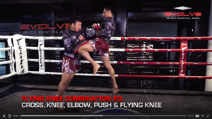 5 Flying Knee Combinations