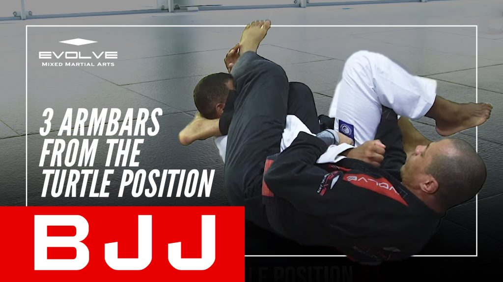3 Armbars From The Turtle Position