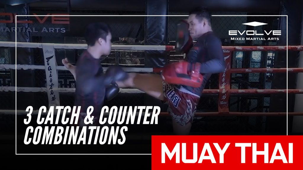 Muay Thai Catch And Counter