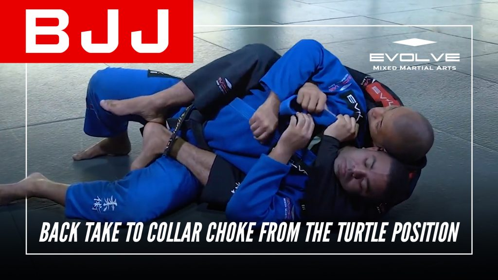 Back Take To Collar Choke From The Turtle Position